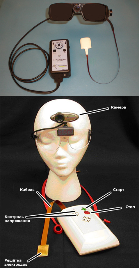 Леденец BrainPort с очками и камерой