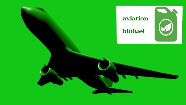[Перевод] Перспективы биотоплива в авиации