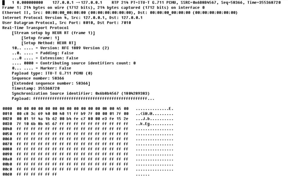 Вид захваченного RTP-пакета