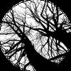 Сортировка бинарным деревом :: Binary Tree Sort