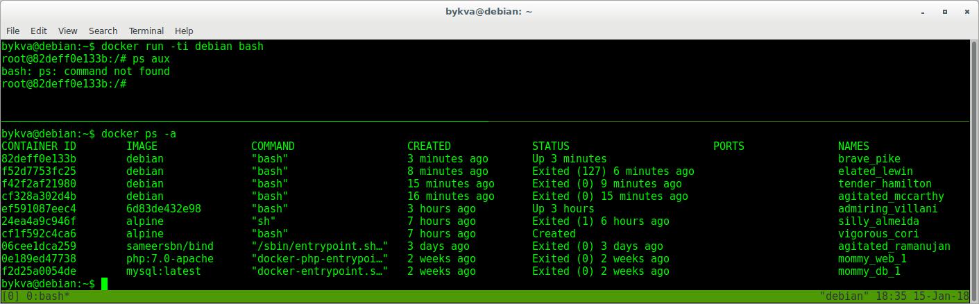 Лабораторная работа: введение в Docker с нуля  Ваш первый