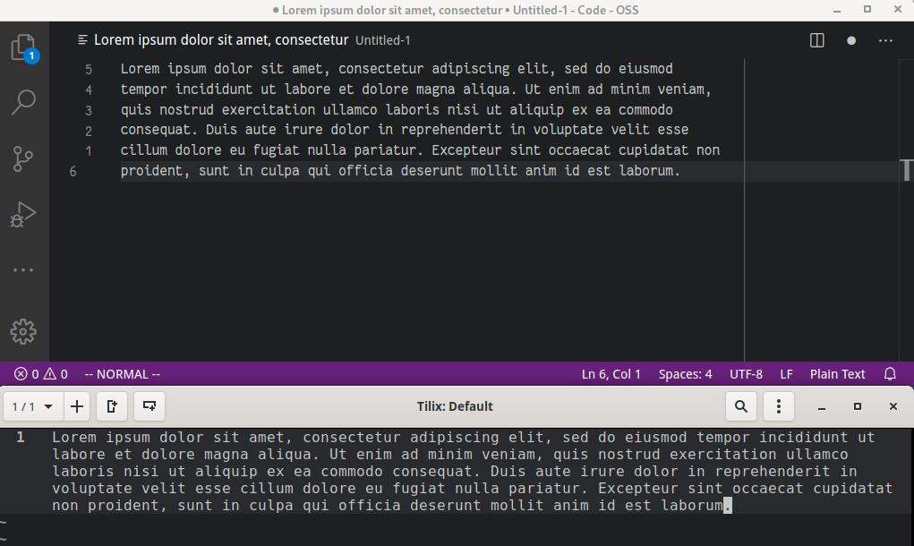 VS Code vs. Neovim/Tilix