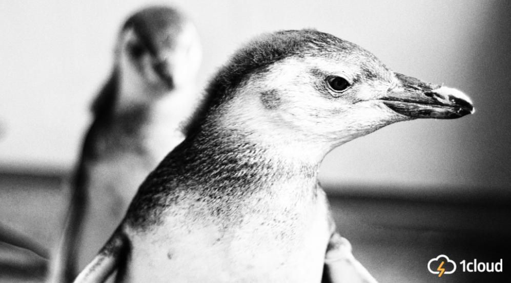 Вся история Linux. Часть II: корпоративные перипетии