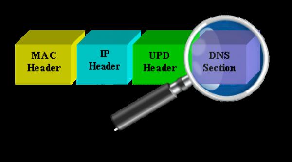 Структура DNS пакета