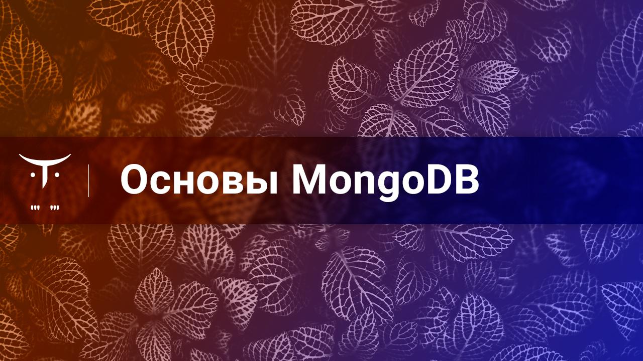 Открытый вебинар «Основы MongoDB»
