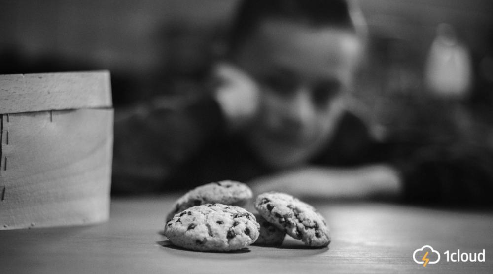 Как проверить cookies на соответствие GDPR — поможет новый открытый инструмент