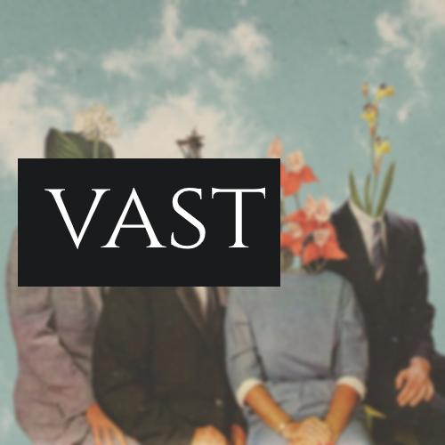 Что такое VAST
