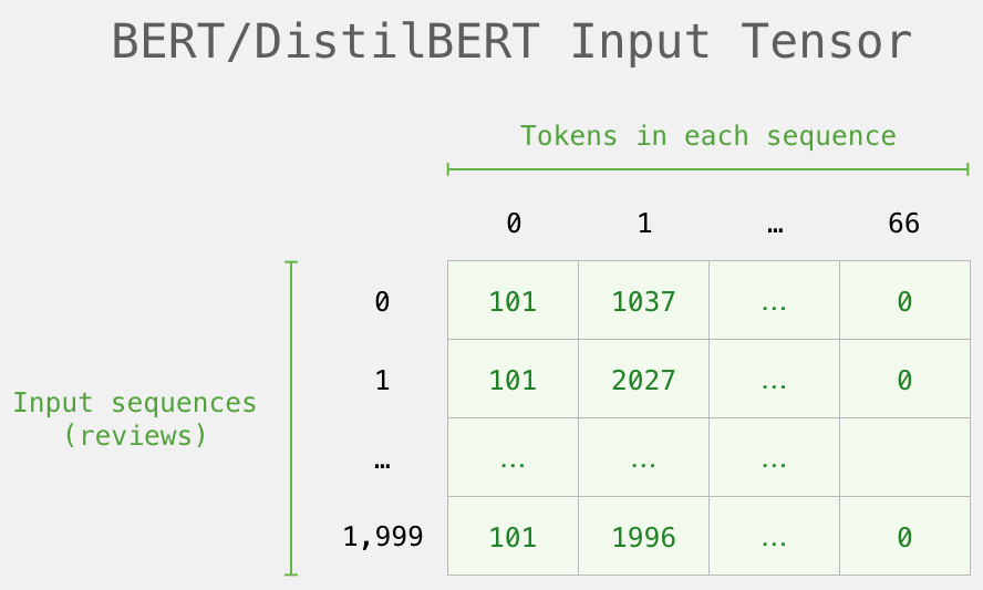bert-input-tensor