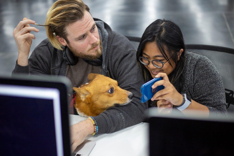 42 Silicon Valley: как пройти отбор