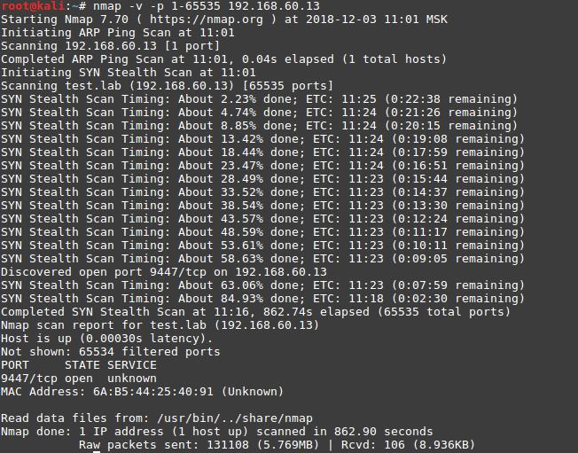 kali linux инструкция по применению