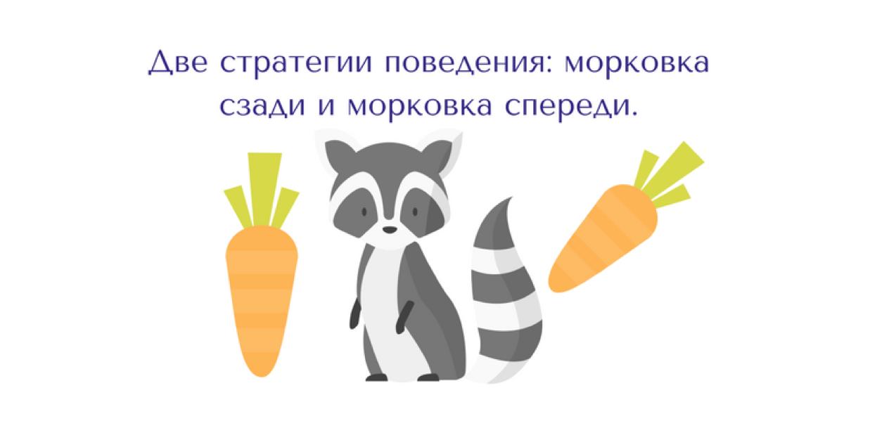 Система мотивации: морковка спереди или морковка сзади
