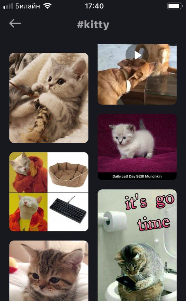 We train on cats: modification of collections and tables in iOS