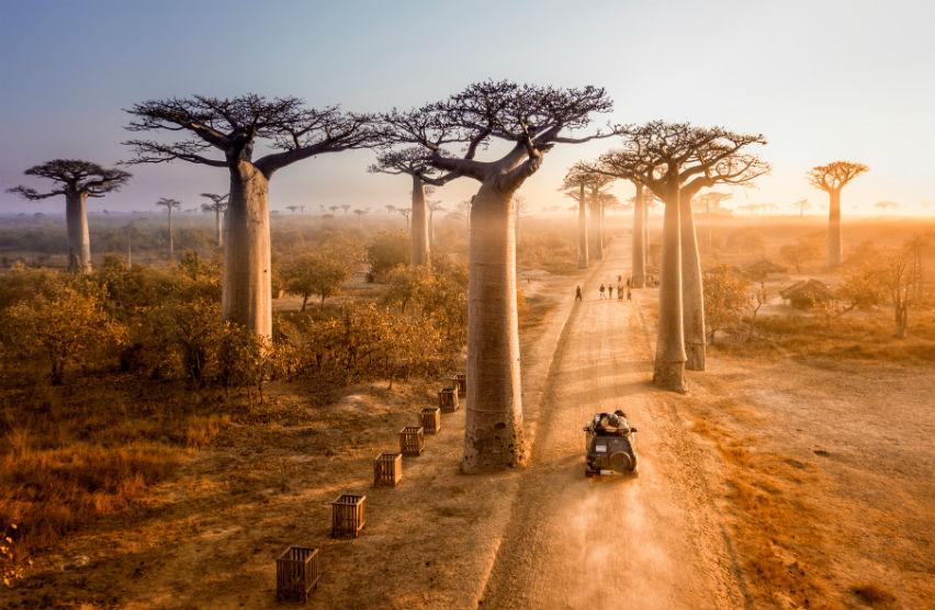 Мадагаскар — остров контрастов