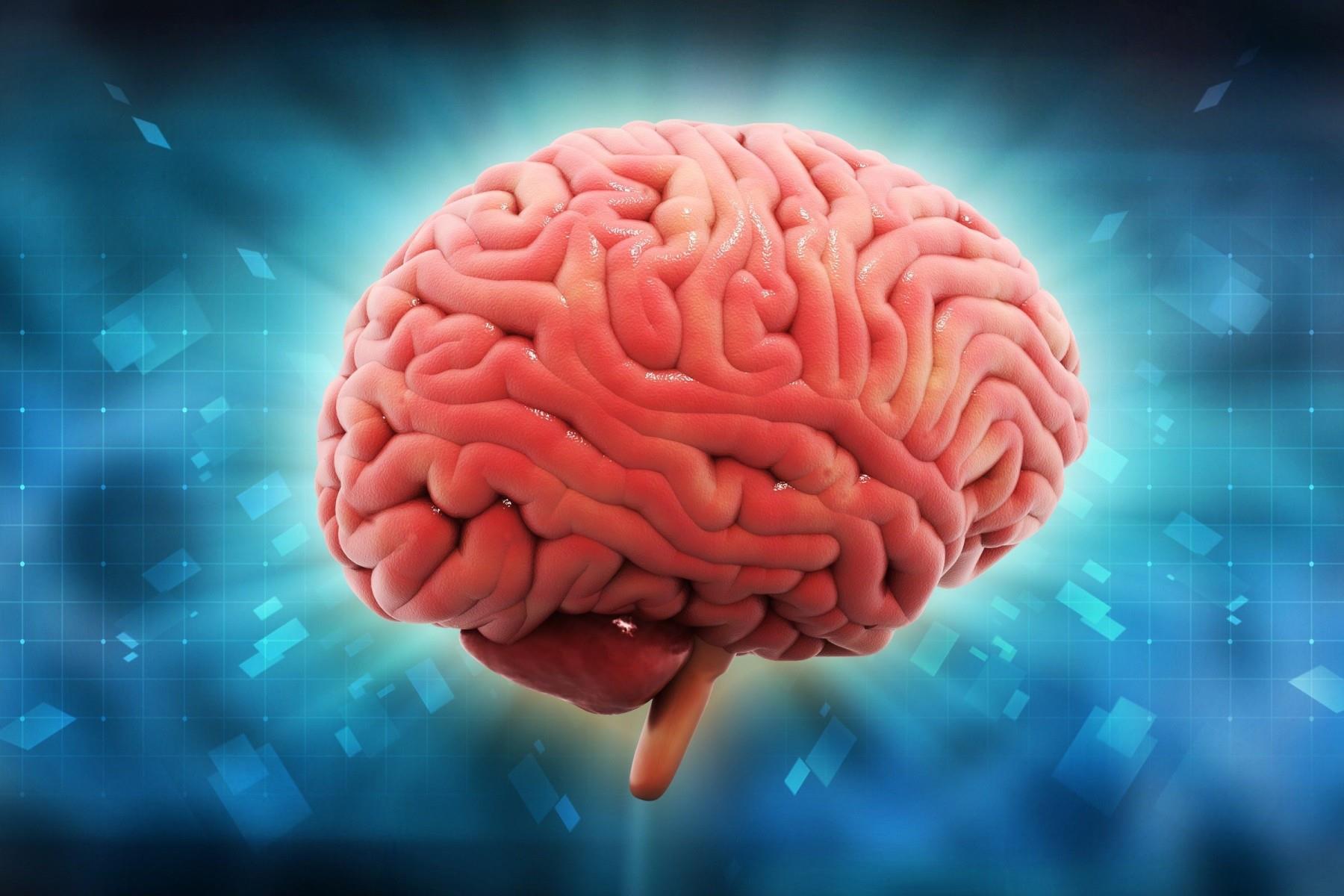 Картинка мозга с надписью, картинки девушке лет