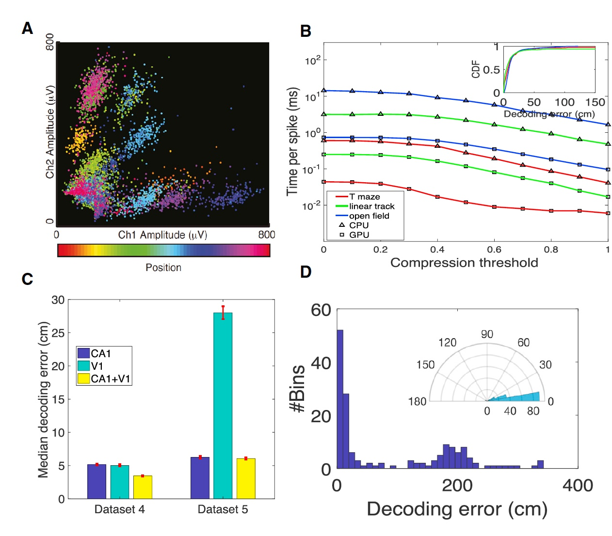 Бегущий в лабиринте: анализ нейронной активности мозга крысы в реальном времени