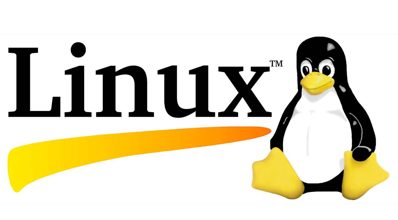We study the processes in Linux