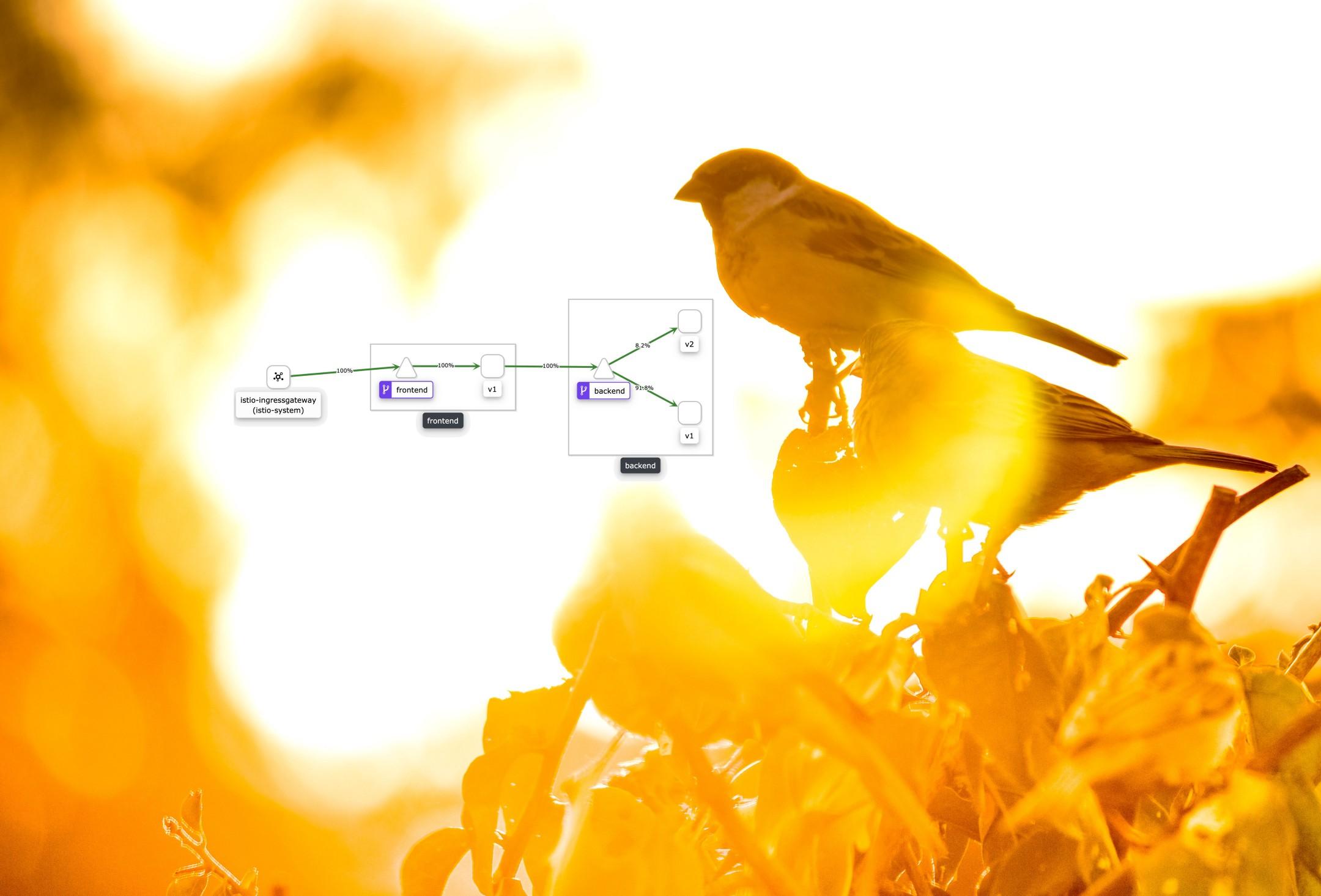 [Перевод] Canary Deployment в Kubernetes #3: Istio