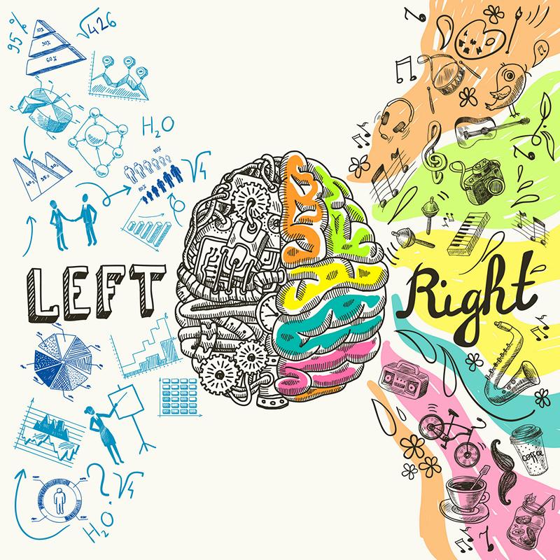[Перевод] Как программирование влияет на мозг и мышление