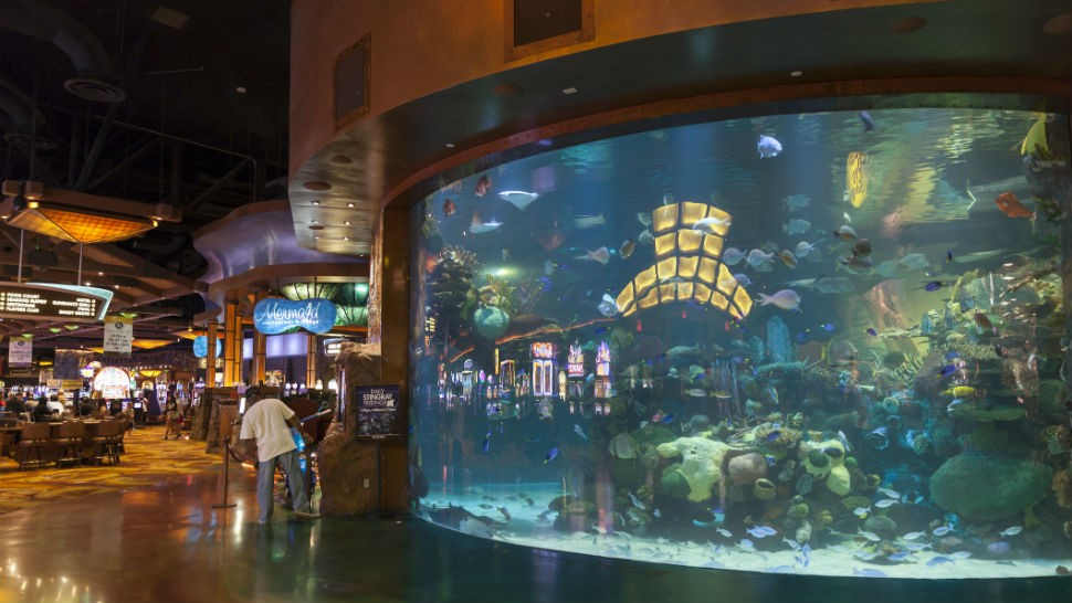 The casino was hacked through a thermostat in the aquarium