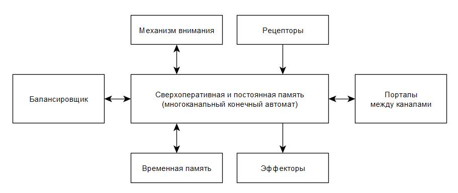 Архитектура мозга. Концепция каналов