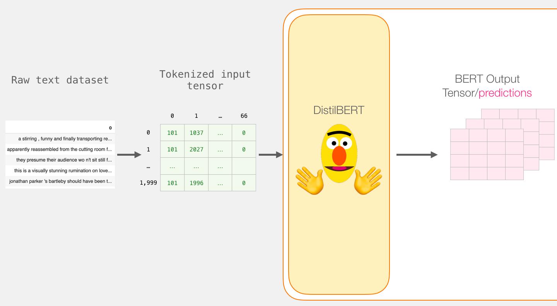 bert-distilbert-output-tensor-predictions
