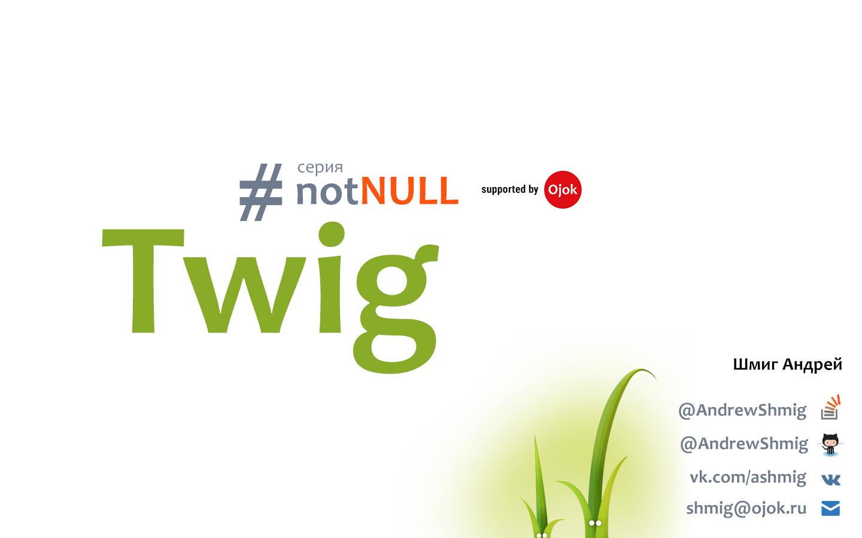 Серия #notNULL — Twig
