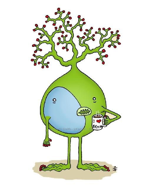 IGNG — инкрементальный алгоритм растущего нейронного газа