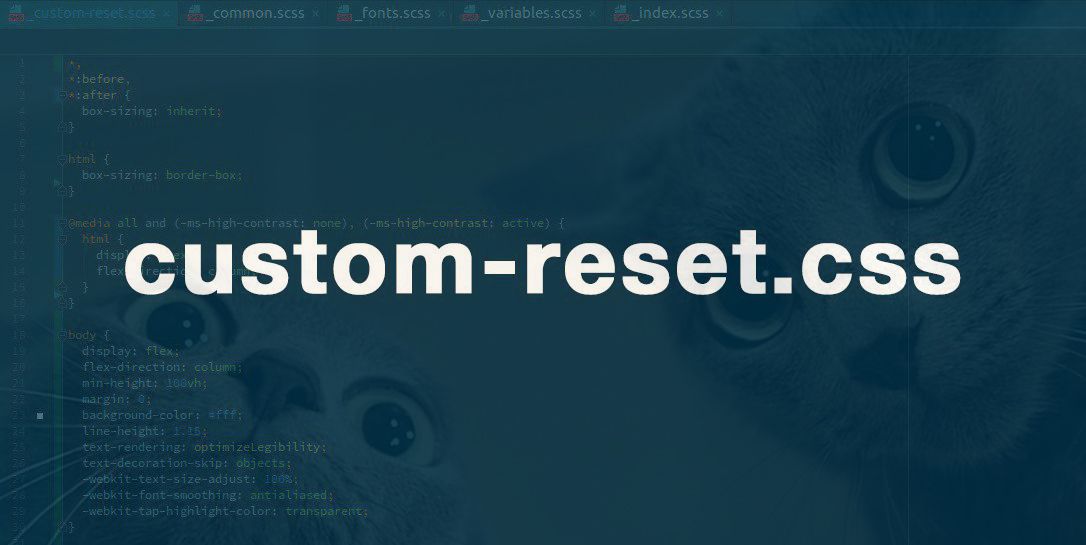 Custom approach for normalizing and resetting styles (custom-reset.css)