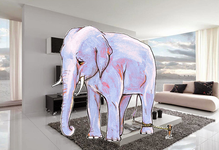 Machine learning: clash with a room elephant