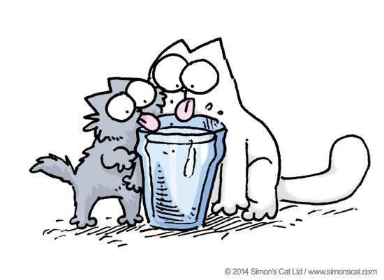Обсуждение оптимального минерального состава питьевой воды