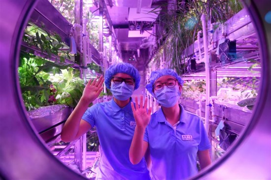 [Перевод] Китайский «Лунный дворец» установил новый рекорд